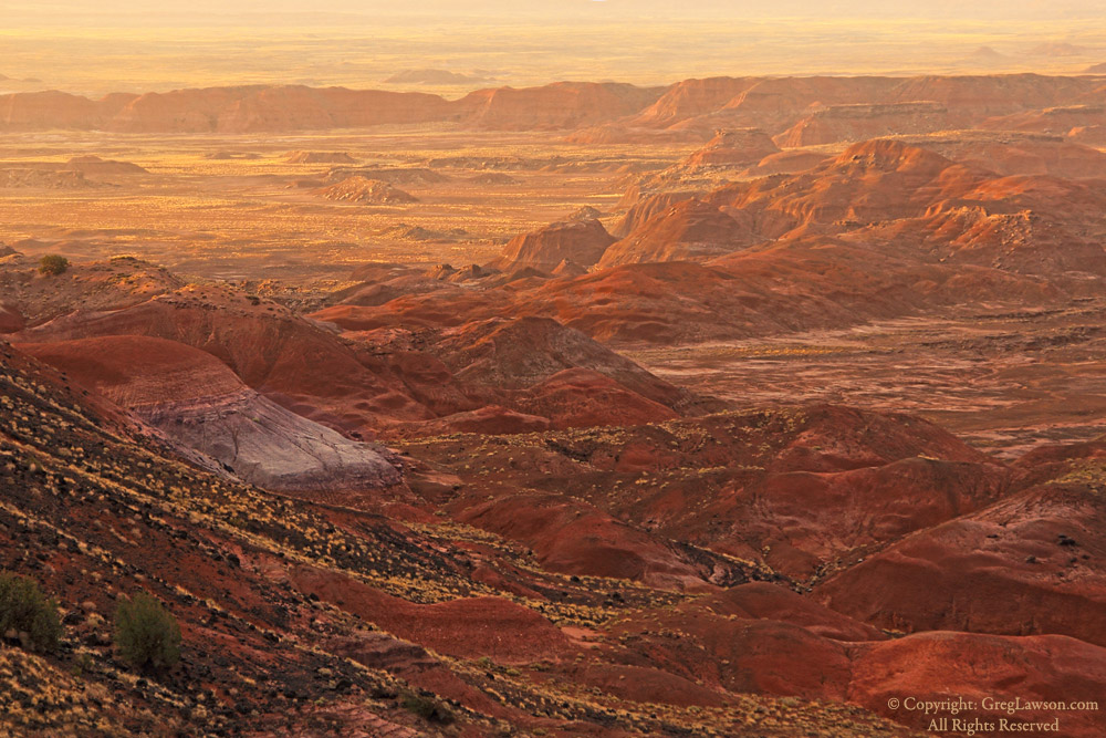 Golden tint at end of day, Painted Desert, Greg Lawson photography art gallery, Arizona