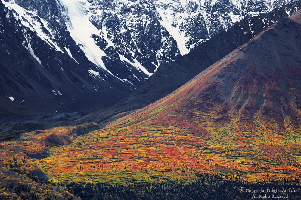 Three seasons in the Yukon Territories, Canada, Greg Lawson Photography art gallery Sedona