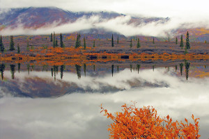 greglawson-octoberphest-alaska-copy
