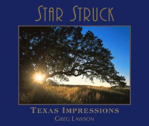 Star Struck - Texas Impressions by Greg Lawson