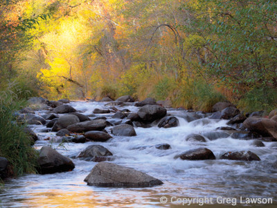 Incandescent glow along the forested banks of Oak Creek, Sedona, Arizona, USA. From the book: Sedona - The Nature of the Place and the Greg Lawson photography art gallery in Sedona.
