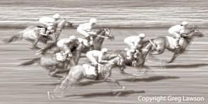 It's A Horse Race