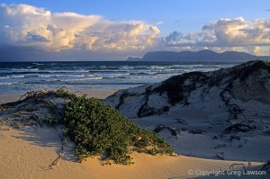 South Africa's False Bay