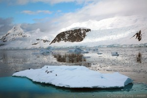 Antarctic Top Ten